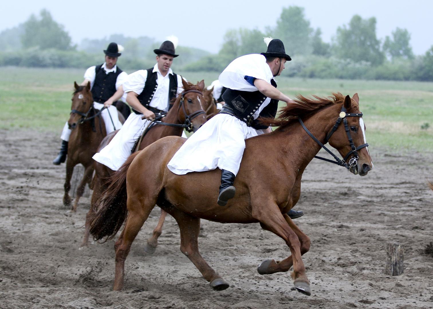 Pferdeshow in der Pusta