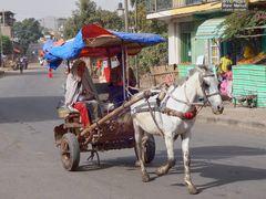 Pferdetaxi in Gondar, Ethipia