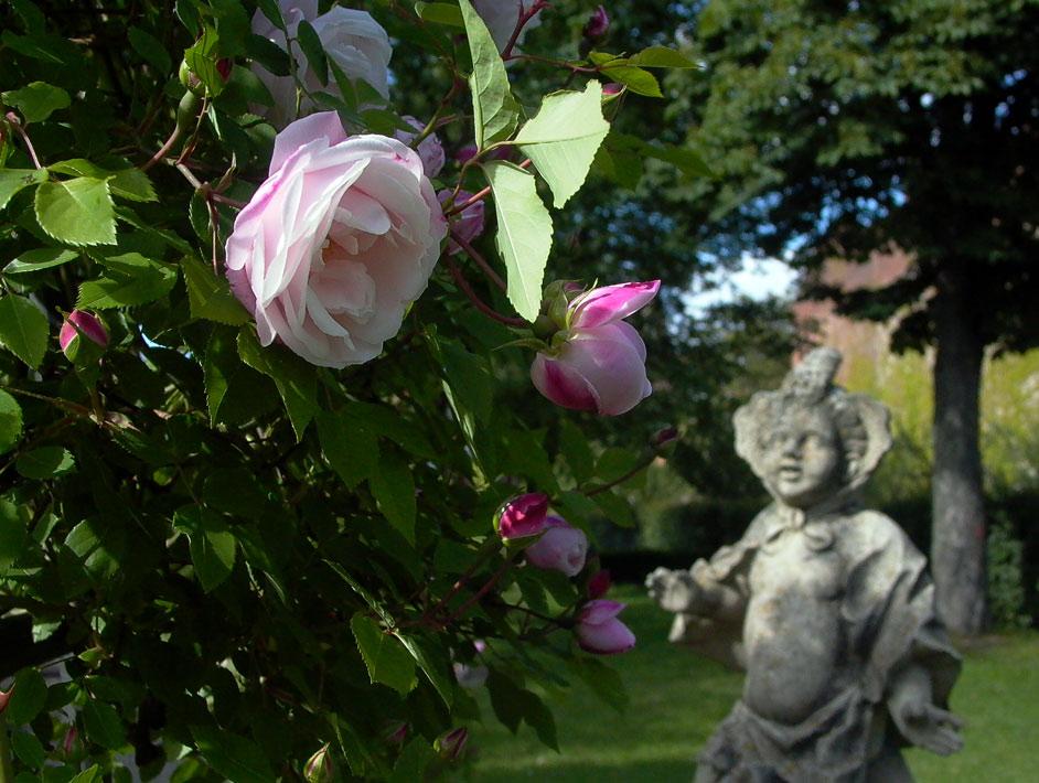 Pfingsten im Hesperidengarten Foto & Bild | landschaft ...