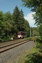 Pfingsten im Thüringer Wald