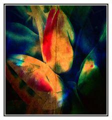 Pflanzen in Multicolor