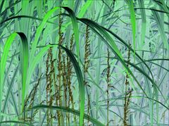 Phantastic Grass Green