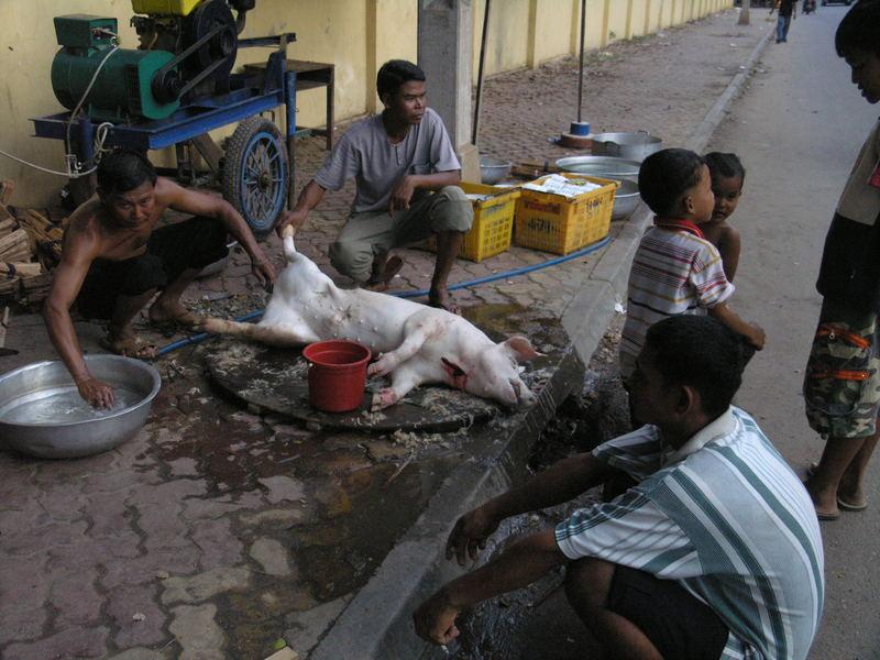 Phnom Penh - Schlachtung