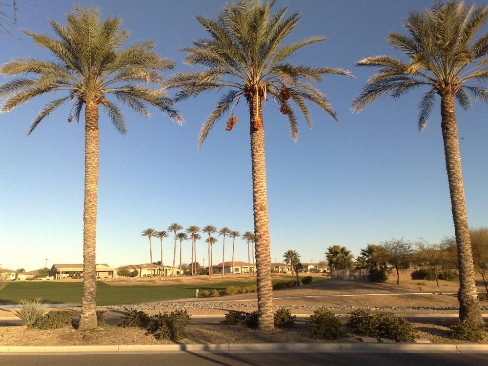 Phoenix im Februar - Arizona - Bundesstaat der ewigen Sonne !!