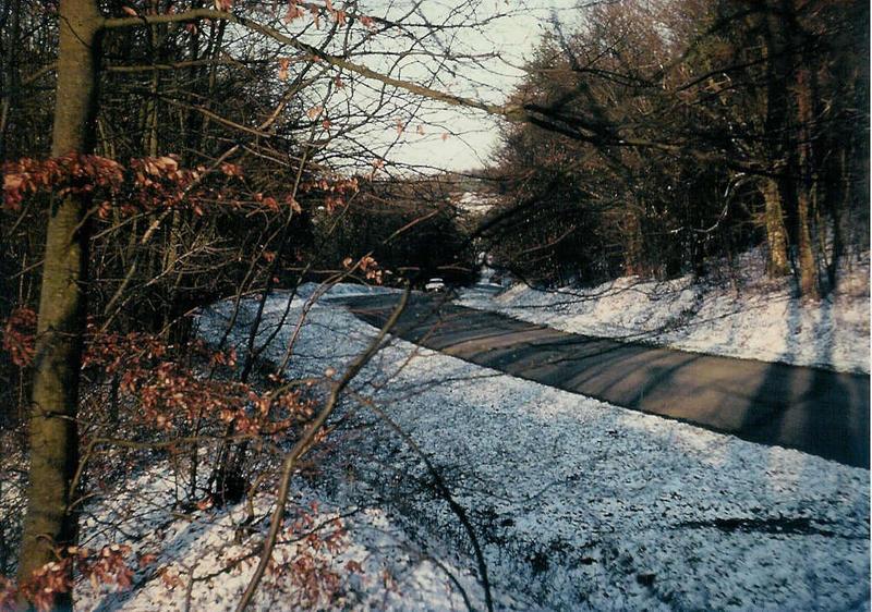 Photo hivernale dans les Ardennes françaises.