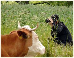 photographers world...