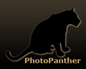 photopanther