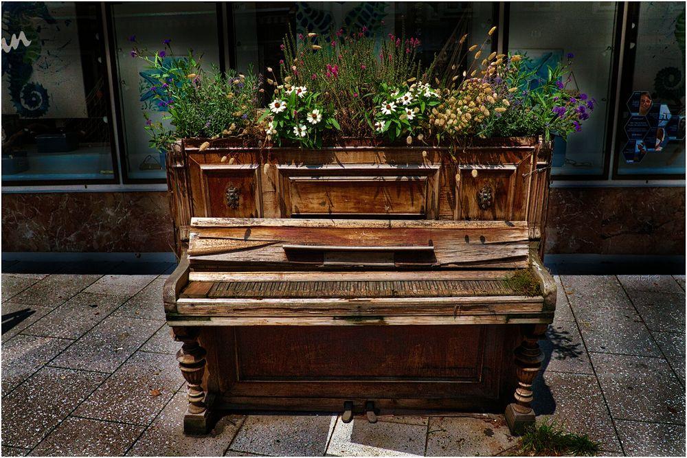 Pianist gesucht