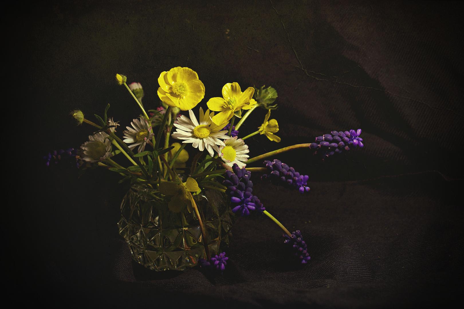 piccoli fiori dal mio giardino