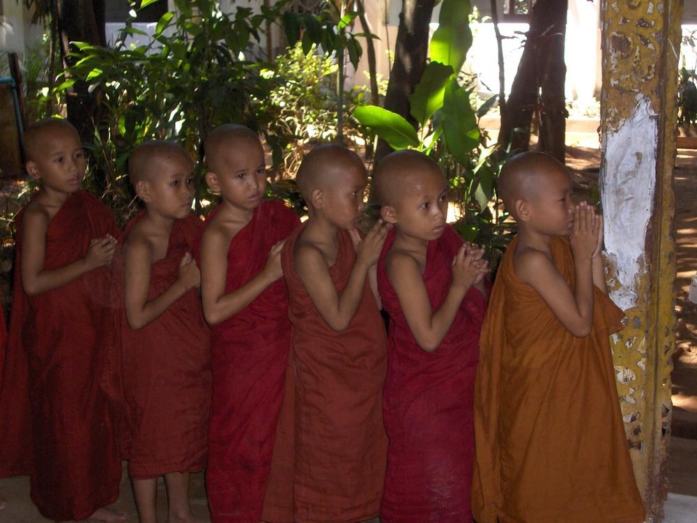 piccoli monaci birmani