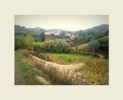 ..Piccolo borgo del Barbaresco..
