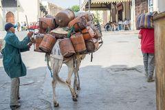 Pick-up truck of Medina