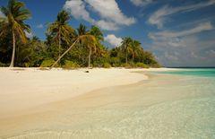 PICKNIK ISLAND
