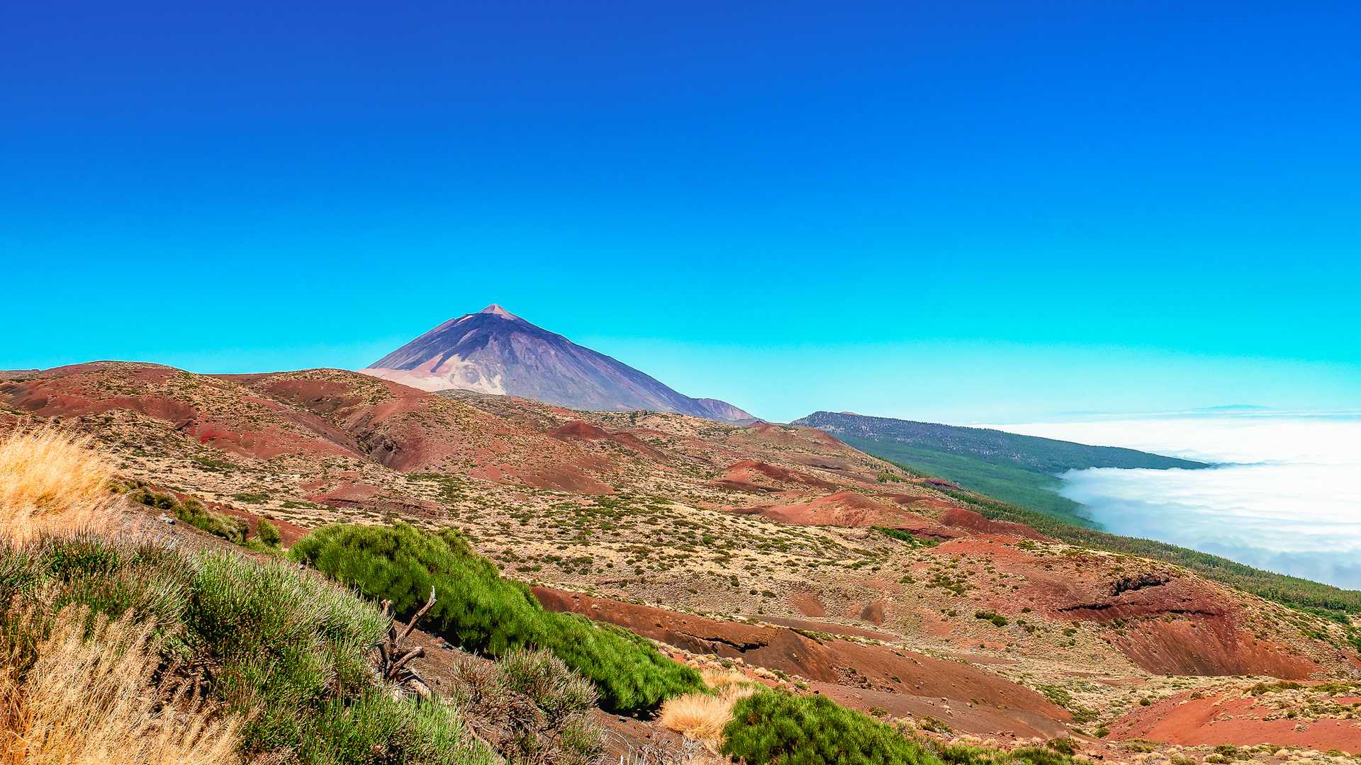 Pico Del Teide Tenerife Foto Bild Landschaft Natur Nature