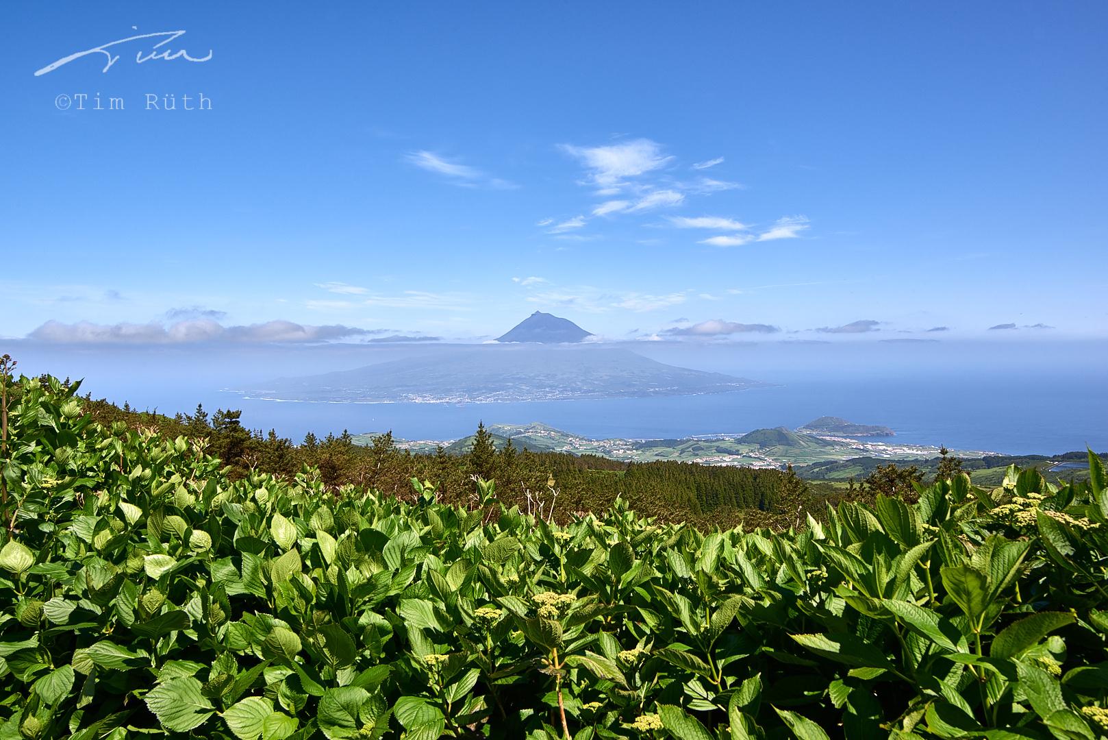 Pico (desde Faial)