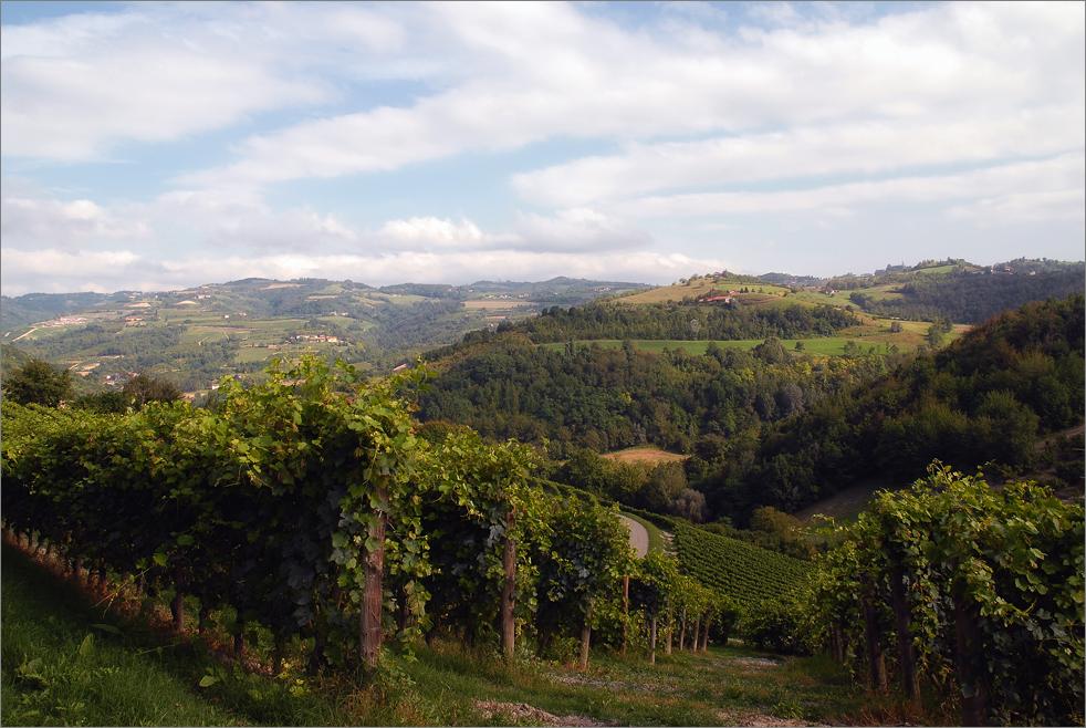 Piemont #29