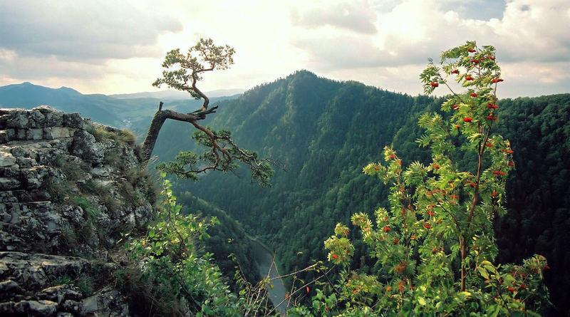 Pieniny Mountains Poland