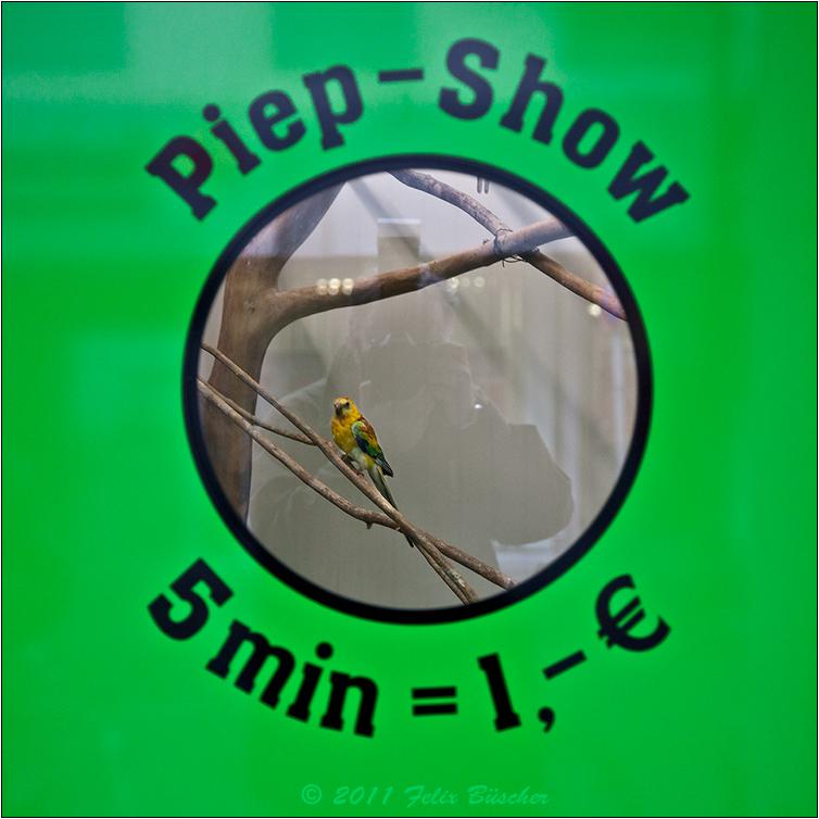 Piep-Show