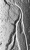 pierre rochet