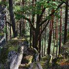 pierres et nature