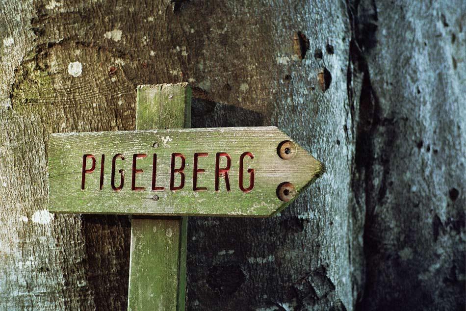 pigelberg