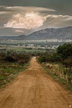 Pilanes National Park, South Africa