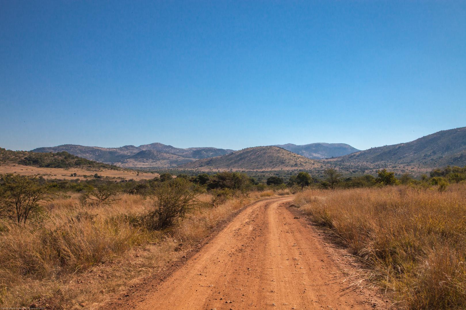 """Pilanesberg, abseits der """"normalen"""" Strasse."""