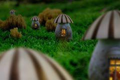 Pilzhäuser im Wald