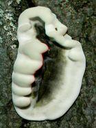 Pilzhandschuh [3D]