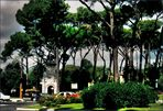 PINES OF THE VILLA BORGHESE