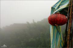 Ping'an - Rizières dans le brouillard