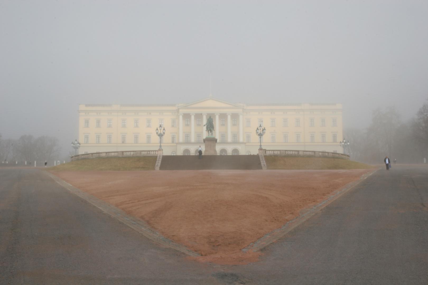 Pinguin im Nebel