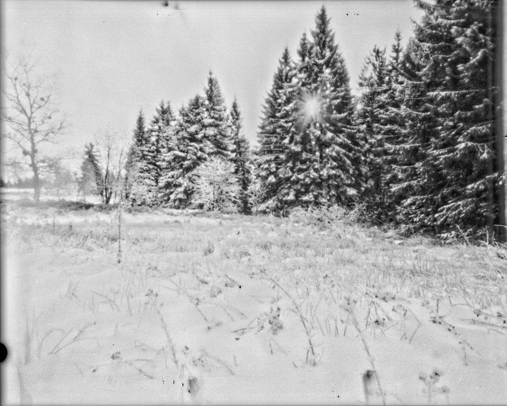Pinhole Schnee