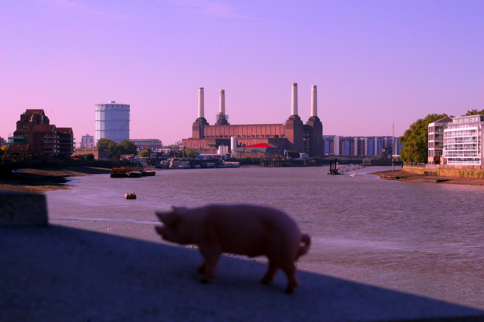Pink Floyd -Animals- in London