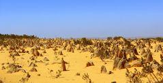 Pinnacles Desert Australien
