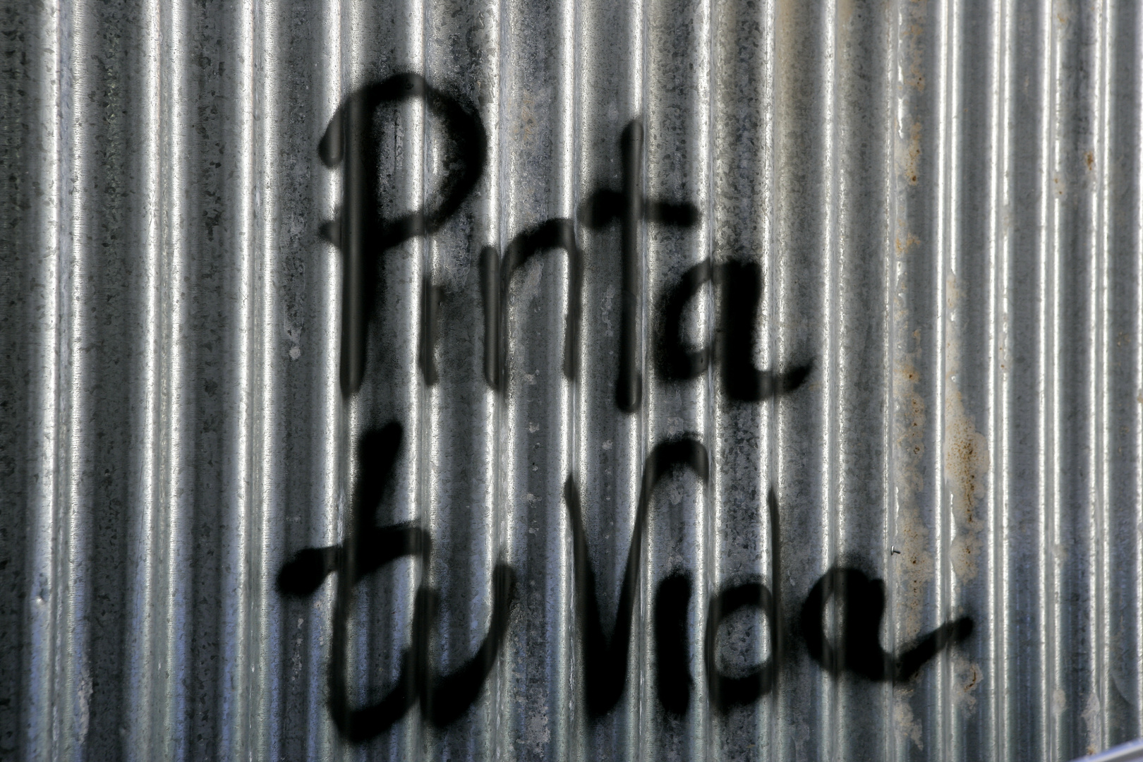 PINTA TU VIDA