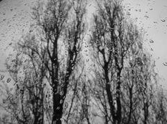 Pioggia battente.....sulla mia finestra