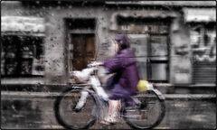 pioggia di giugno su Bologna