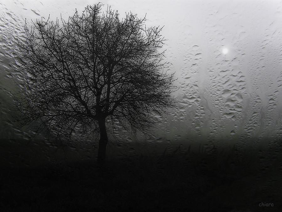Pioggia silenziosa