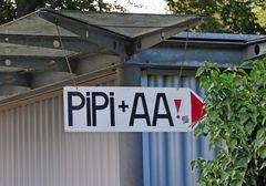 PiPi + AA