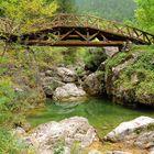 Pironia, Holzbrücke am Fuße des Olymps