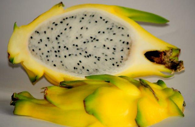 Pitahaya / Drachenfrucht