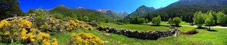 Pla de la Selva 1.695 m ( Parc Natural de l'Alt Pirineu - Catalunya- España) von Miguel-Angel Ramón maramon