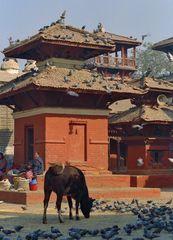 place de patan au nepal