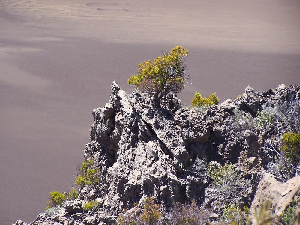 Plaine des sables