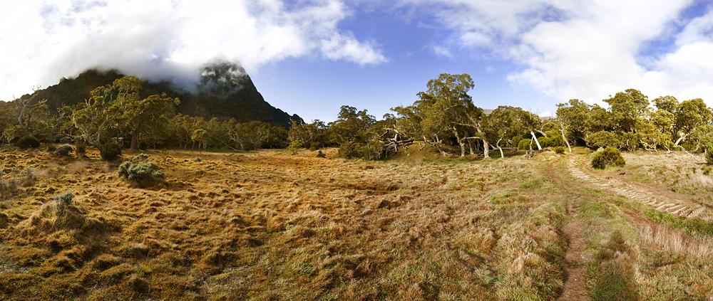 Plaine des Tamarins - La Réunion 2012