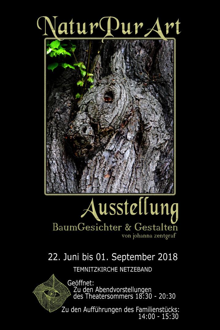 Plakat Naturpurart Ausstellung Netzeband Pferd Foto Bild Natur