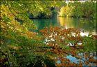 plan d'eau en automne