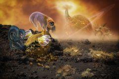 Planet Pumpkin