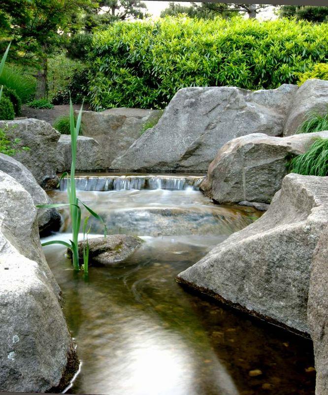 Planten Un Blomen Japanischer Garten 2 Foto Bild Deutschland